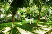 grounds at amigos hostel cozumel